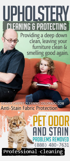 upholstery cleaning protectors